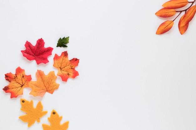 コピースペースを持つ美しい自然概念 Premium写真