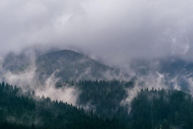 美しい自然の風景。霧の深い霧の山頂の風光明媚な景色は、雨の嵐雲で覆われています。夏の森と神秘的な丘。 Premium写真