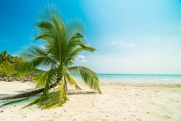 Beautiful nature tropical beach Free Photo