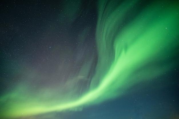 아름 다운 오로라, 오로라 보 리 얼리스 밤 하늘에서 춤을 프리미엄 사진