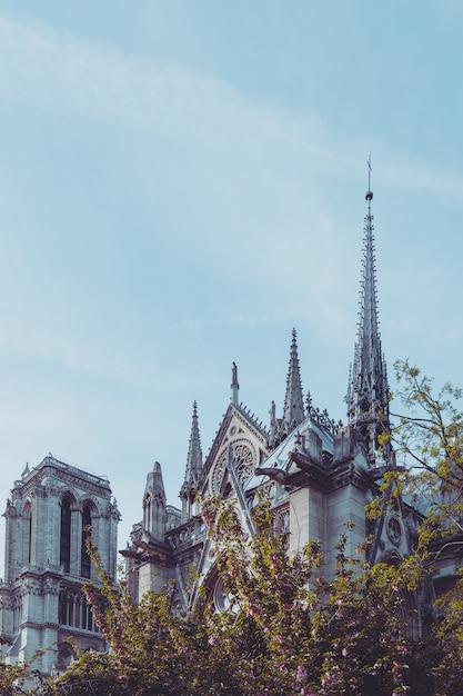 パリの美しいノートルダム大聖堂 Premium写真