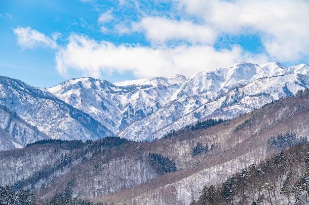 Bella vista panoramica delle montagne innevate con alberi spogli Foto Gratuite