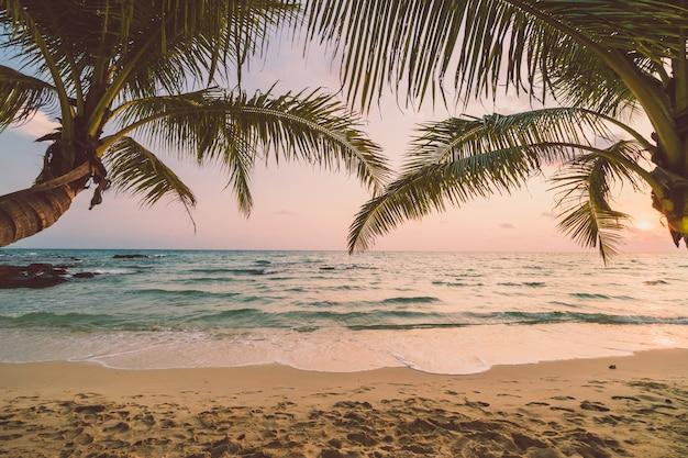 Beautiful paradise island with beach and sea Free Photo