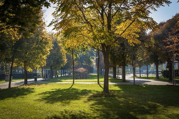 Красивый парк в солнечный осенний день в центре вены Premium Фотографии