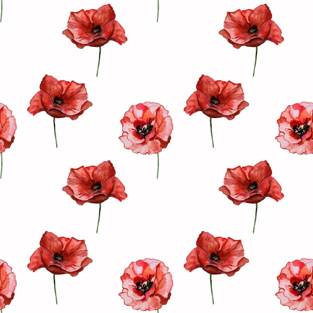 양귀비 꽃의 아름다운 그림. 행복한 현충일. 클로즈업, 위에서 볼 수 있습니다. 공휴일 개념. 가족, 친척, 친구 및 동료를 축하합니다 프리미엄 사진