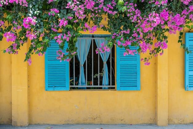 Красивые розовые цветы и окно с голубыми ставнями на желтой старой стене на улице Premium Фотографии