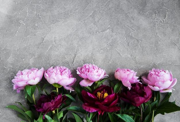 Beautiful pink  peony flowers Premium Photo