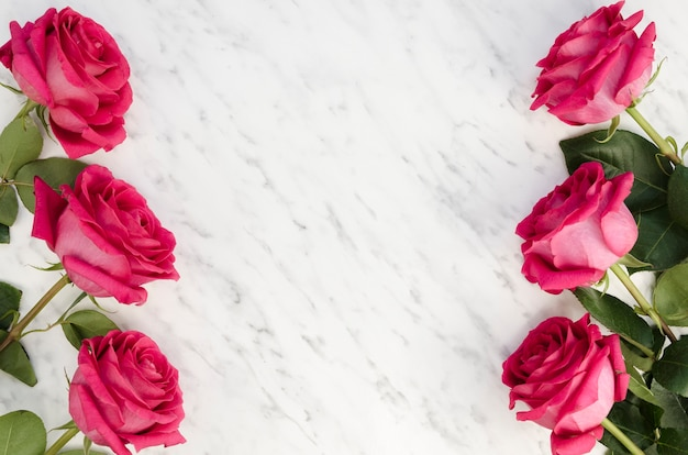 Beautiful pink roses on marble background Free Photo