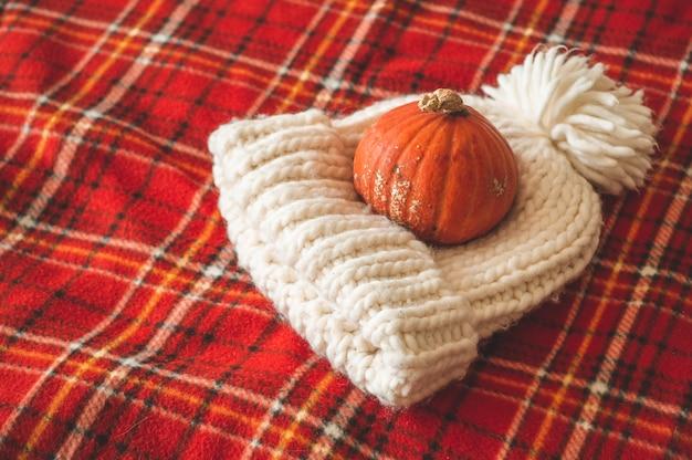 Красивая тыква, шляпа, в клетку красного цвета. поздравления с временами года. уютная осень. Premium Фотографии
