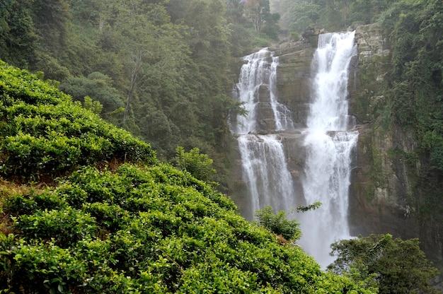 Beautiful ramboda waterfall in sri lanka island Free Photo