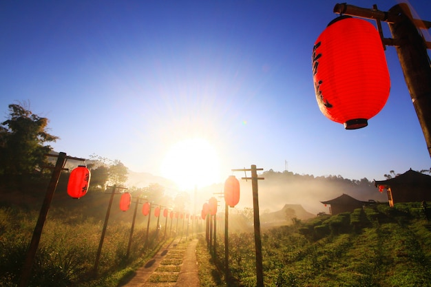 Beautiful red paper chiwalkwaynese lanterns decoration on walkway in the mist and sunrise at lee wine ruk thai resort located on the mountain, thailand Premium Photo