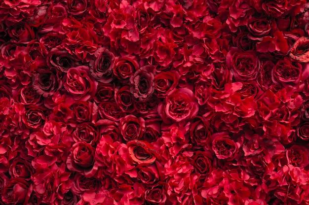 Красивые красные розы. цветочная стена. крупный план огромных красных роз. подарок на день святого валентина. любовь и страсть. цветочный дизайн. Premium Фотографии