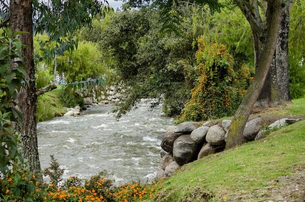 田舎町の公園を流れる美しい川 無料写真