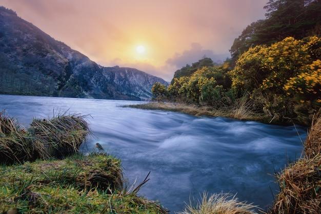 Bellissimo fiume circondato da piante e fiori dalle montagne sotto il cielo colorato Foto Gratuite