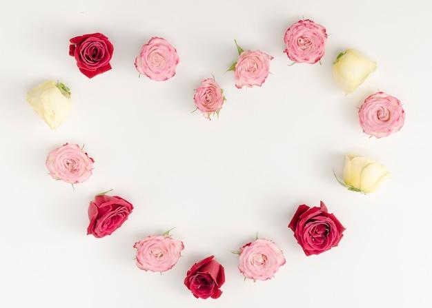 Beautiful rose frame on plain background Free Photo