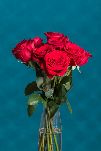 Beautiful roses in vase in front of blue wall Free Photo