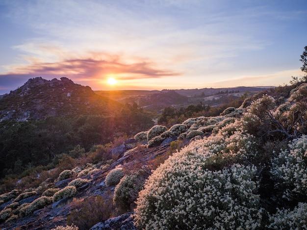 Splendido scenario del tramonto mozzafiato al parco naturale di montesinho in portogallo Foto Gratuite