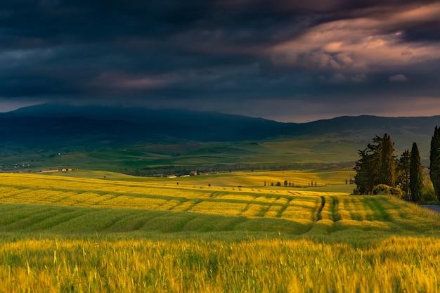 Splendido scenario di un campo circondato da colline immerse nel verde Foto Gratuite