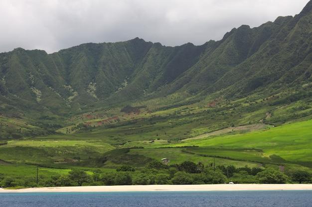 Splendido scenario di un paesaggio verde con montagne nel lato ovest di ohau Foto Gratuite