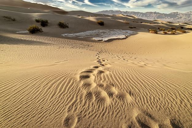 Uno splendido scenario delle dune di sabbia mesquite flat, death valley, california Foto Gratuite