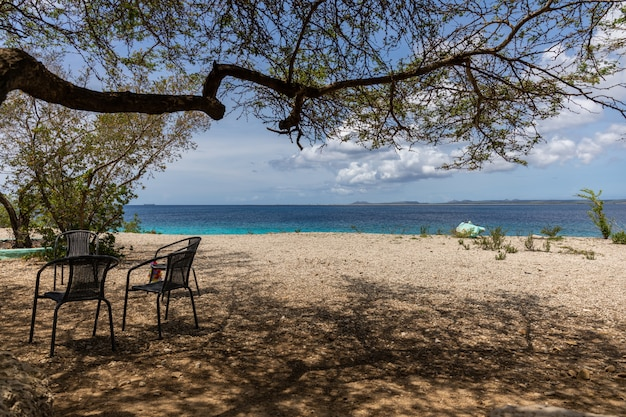 보네르, 카리브해에서 여름 오후를 보내기에 완벽한 해변의 아름다운 풍경 무료 사진