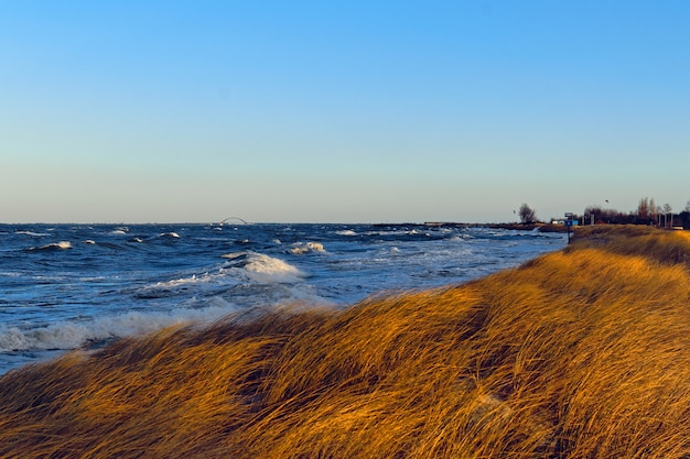 息を呑むような空の下、海沿いの芝生の丘の美しい景色 無料写真