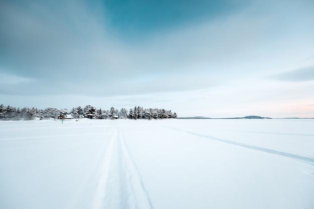 日没時の雪に覆われた土地にたくさんの葉のない木々の美しい風景 無料写真