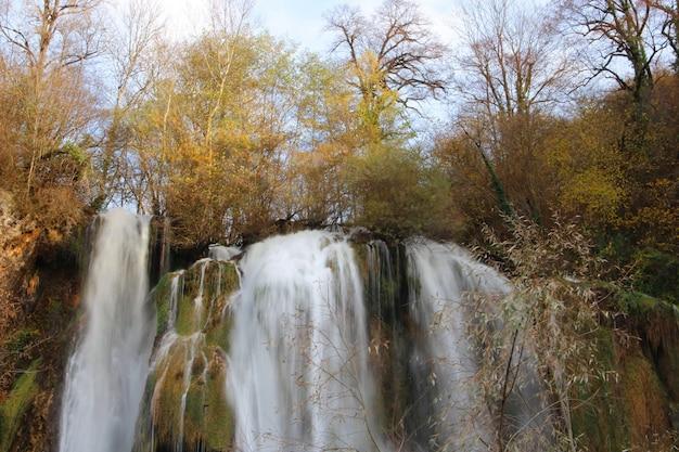 Красивые пейзажи мощного водопада в окружении деревьев в лесу Бесплатные Фотографии