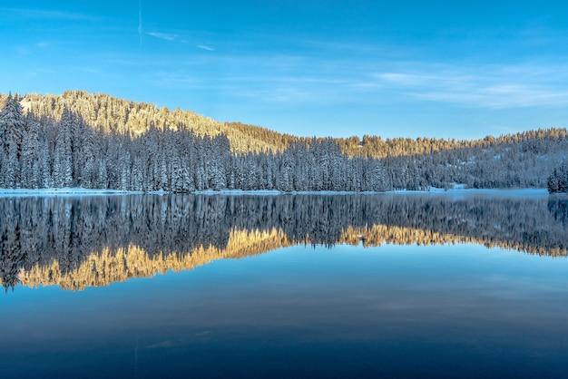 山々に囲まれた湖に映る木々の美しい風景 無料写真