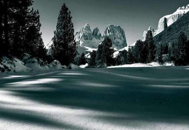 Красивые пейзажи заснеженной местности в окружении множества скалистых обрывов и елей в доломитовых альпах. Бесплатные Фотографии