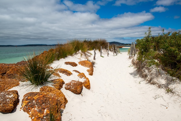曇り空の下の砂浜のビーチで岩の形成と茂みの美しい風景 無料写真