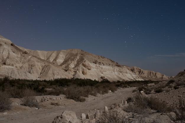 별이 빛나는 하늘 아래 록키 산맥의 아름다운 풍경 무료 사진