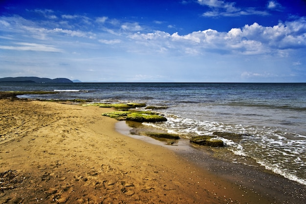 Beautiful scenery of sea coast with a lot of rocks covered with moss Free Photo