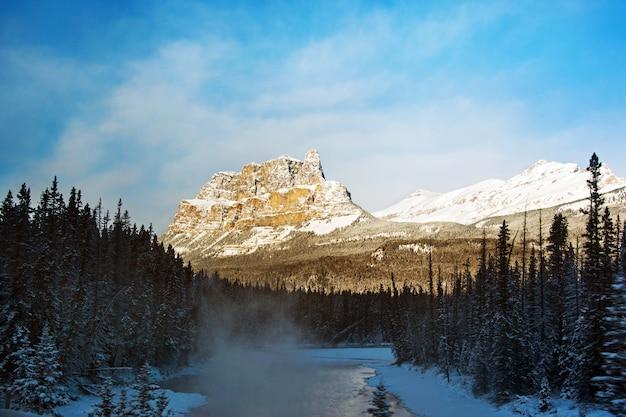 Splendido scenario di una zona innevata con molti alberi verdi circondati da alte montagne rocciose Foto Gratuite