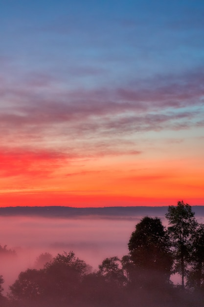 Beautiful shot of the amazing sunset with the red sky over a misty forest in the countryside Free Photo