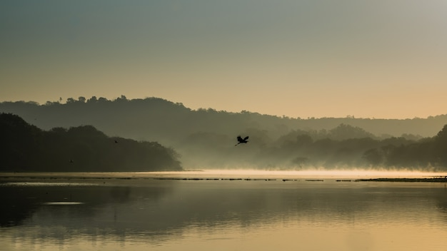 Beautiful shot of a bird flying above the lake water surrounded by mountains and trees Free Photo
