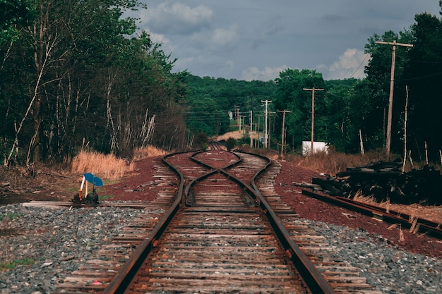 Beautiful shot of a brown metal train track surrounded by trees Free Photo
