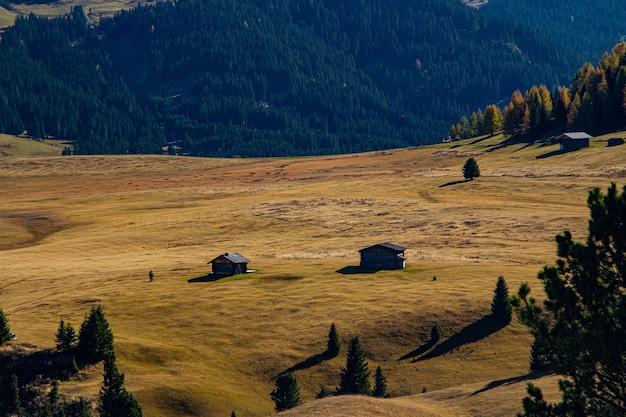 Bella ripresa di edifici su una collina erbosa con una montagna boscosa in lontananza nelle dolomiti italia Foto Gratuite