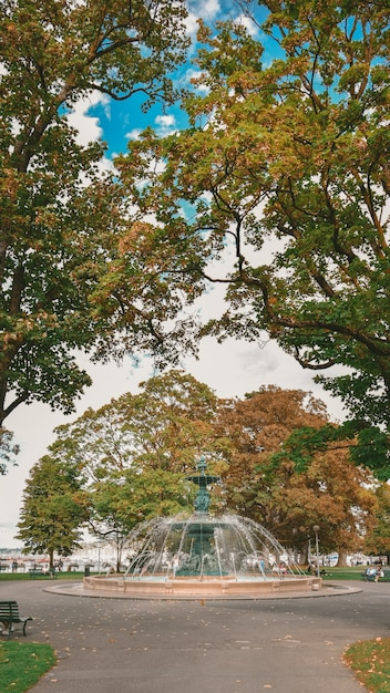 Bella ripresa di una fontana in mezzo alla strada circondata da alberi in svizzera Foto Gratuite