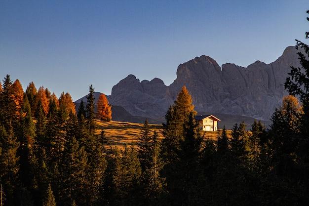 Bellissimo colpo di alberi verdi con una casa e una montagna in lontananza nelle dolomiti italia Foto Gratuite