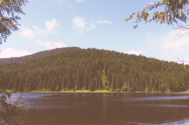 Bello colpo di un lago con e la montagna più forrest Foto Gratuite