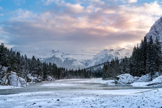 Bello scatto di una zona montuosa coperta di neve e circondata da boschi Foto Gratuite
