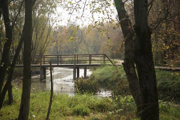 秋のモスクワの公園で川を橋の美しいショット 無料写真