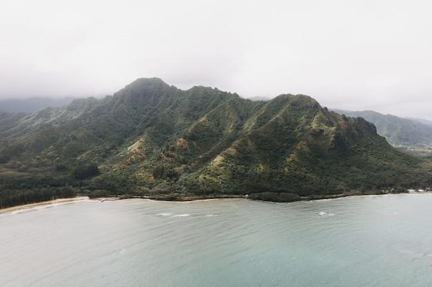 アメリカのハワイで身をかがめるライオンハイキングカアアワの美しいショット 無料写真
