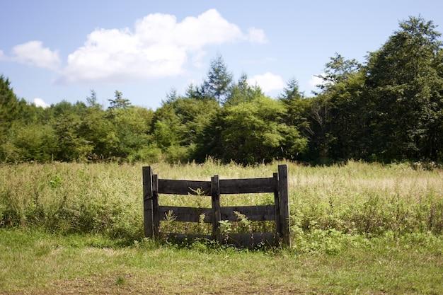 Красивый снимок травяного поля с деревянными воротами в окружении зеленых деревьев Бесплатные Фотографии
