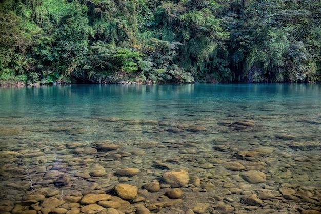 Красивая съемка озера около зеленых плантаций в деревне pinglin, тайване Бесплатные Фотографии
