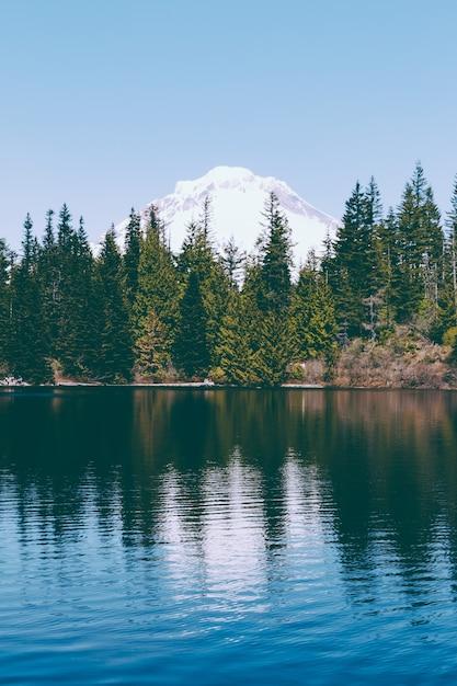 Красивый снимок озера с сосновым лесом и отражениями в озере Бесплатные Фотографии