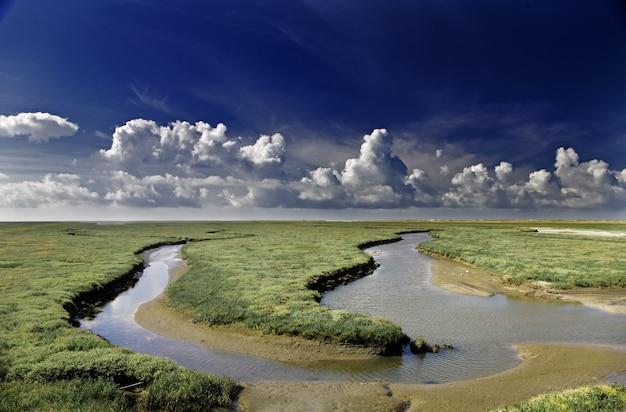 間に水流がある緑の野原の風景の美しいショット 無料写真