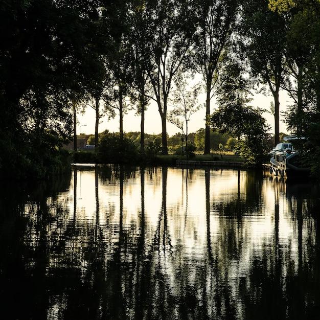 ボートと緑の木々に囲まれた池の美しいショット 無料写真