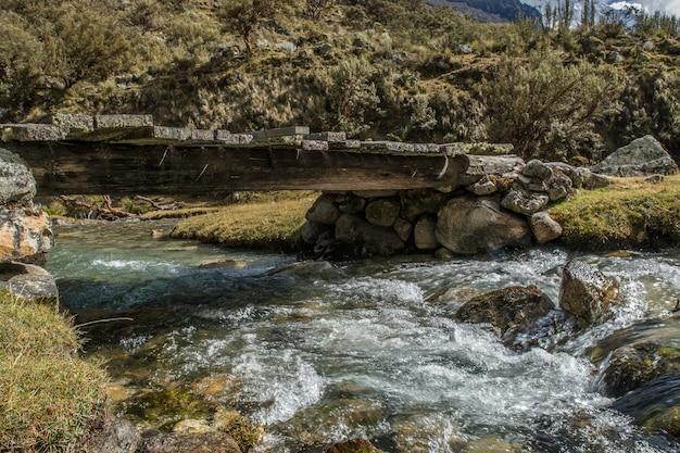 森の真ん中にある橋の下の川の美しいショット 無料写真